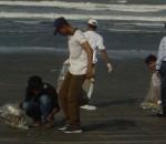 KMC to clean coastal areas of Karachi