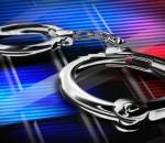 National Accountability Bureau arrests former PDA Director
