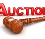 auction of commercial plots