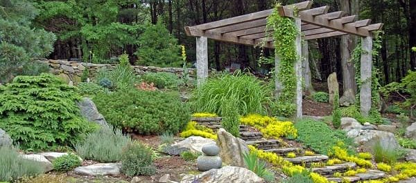 Ideas for a gorgeous grassless garden - Zameen Blog on Grassless Garden Ideas id=97042