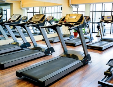A row of treadmills in a gym