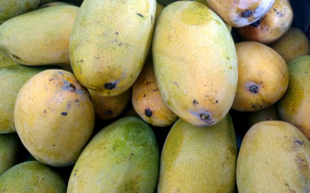 Dasehri Mangoes