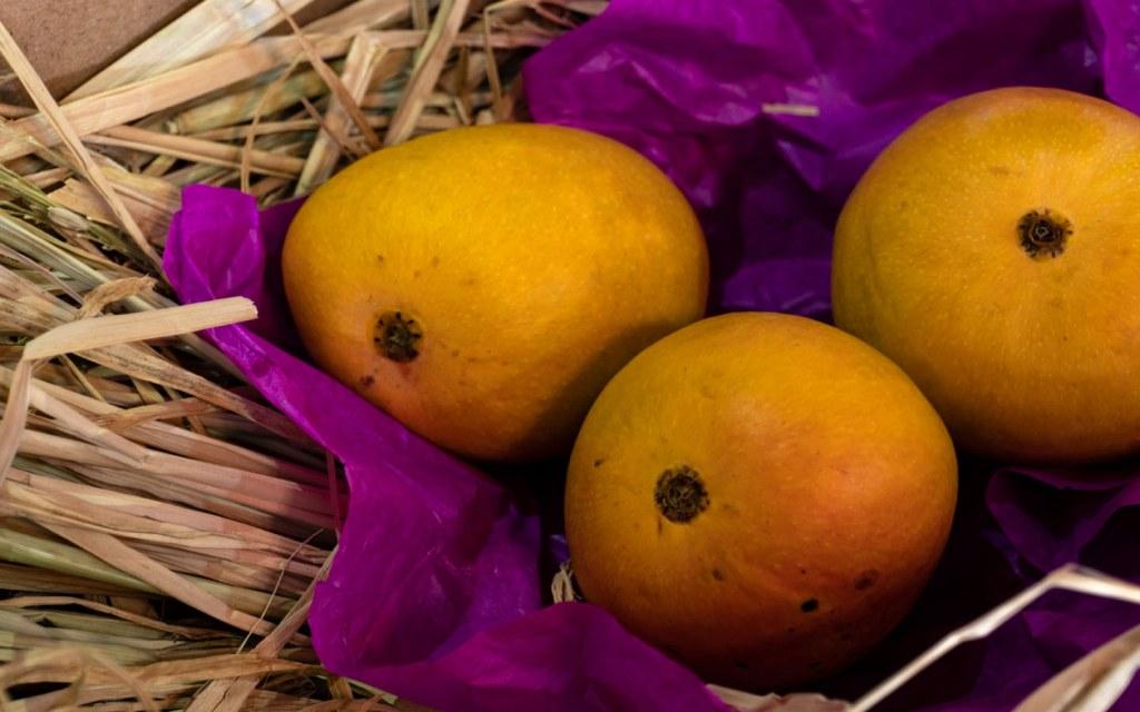 Fajri Mangoes