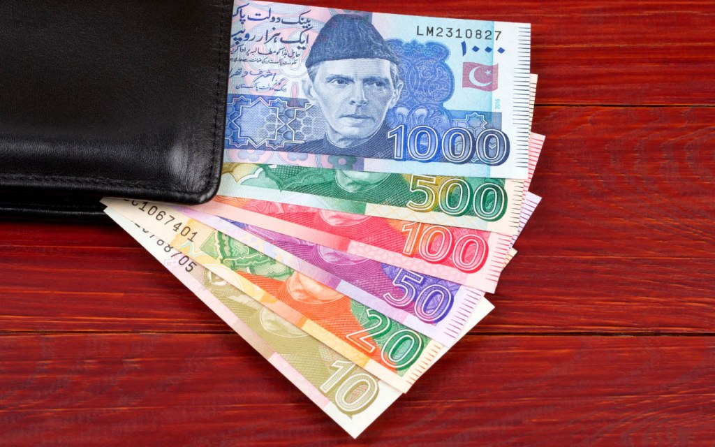Wallet with Pakistani Currency