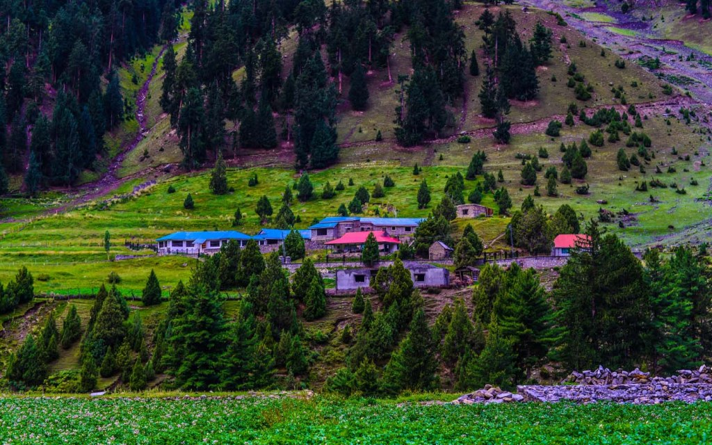 Naltar, Gilgit Valley