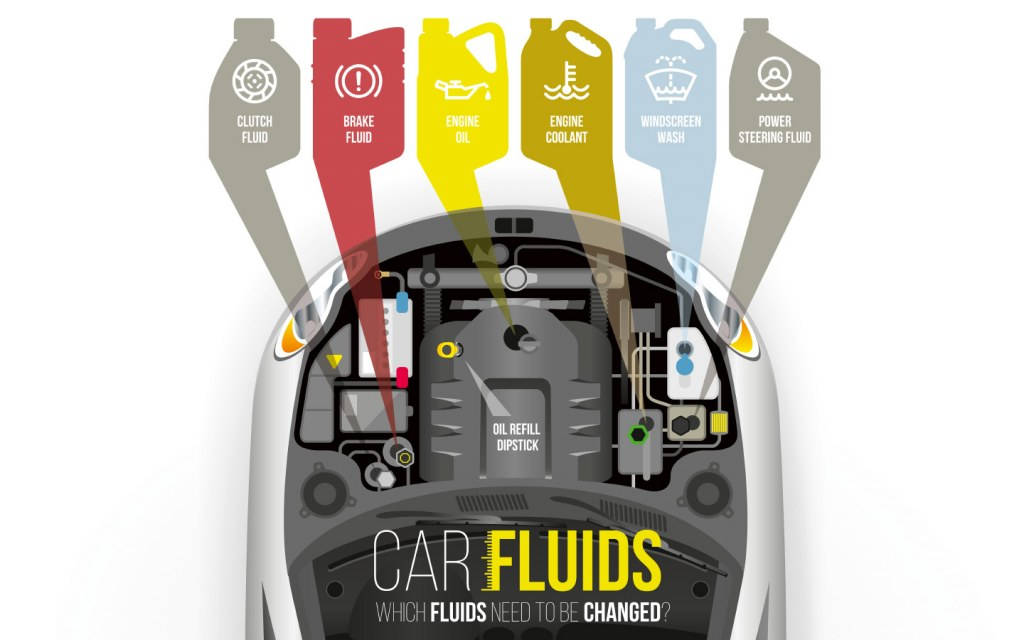 Infographic on Car Fluids to Refill