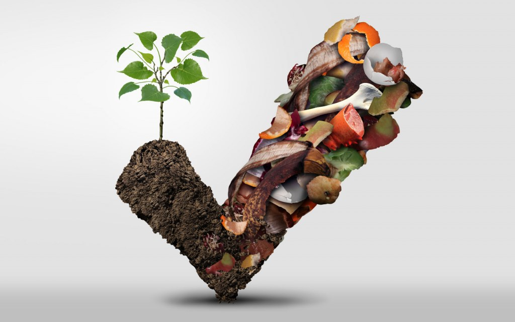 Compost provides a nutrient rich soil