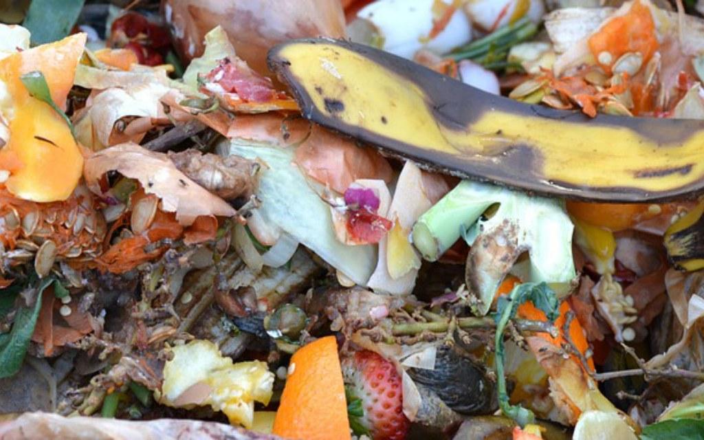 Organic compost for kitchen garden soil