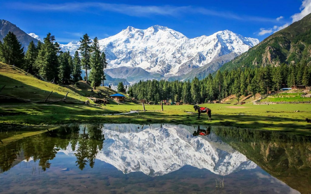 People from all over the globe visit Fairy Meadows for its spell bound beauty