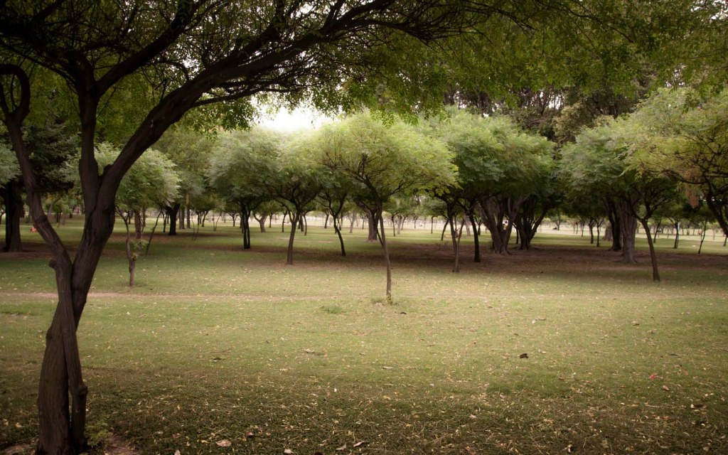 Model Town Park is a soothing place to visit