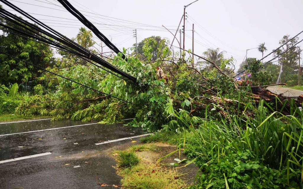 stay away from fallen electric wires during rainfall