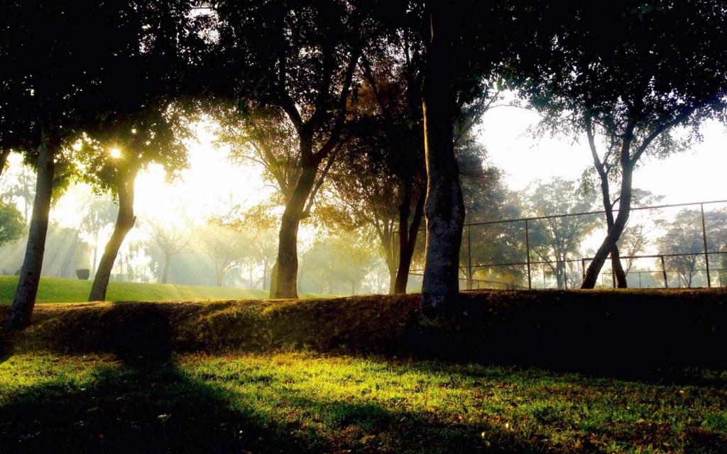 Jilani Park is a beautiful park in Lahore