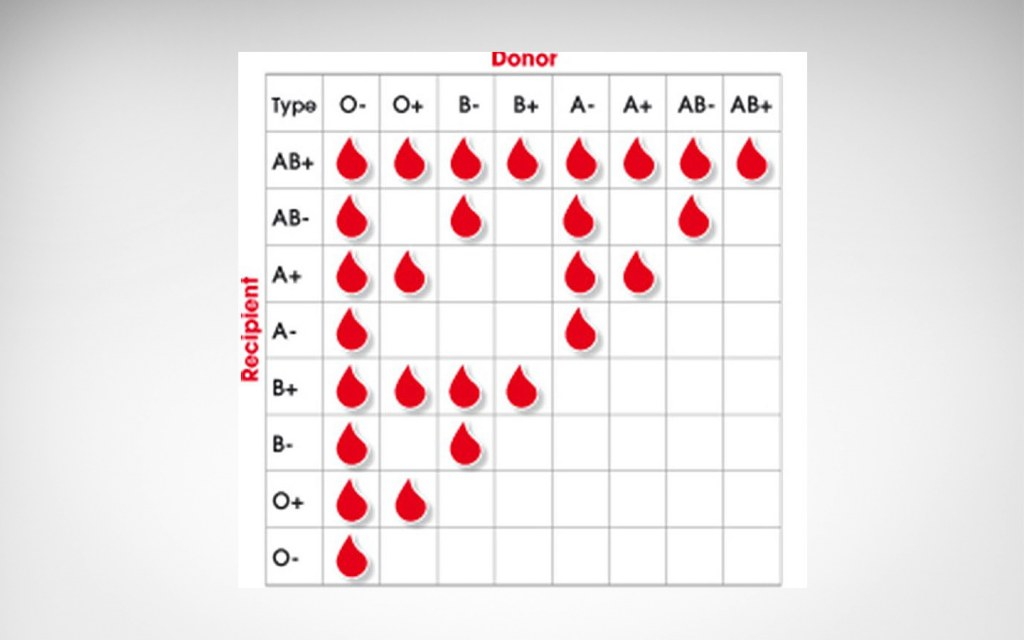 Blood compatibility chart for blood tranfusion