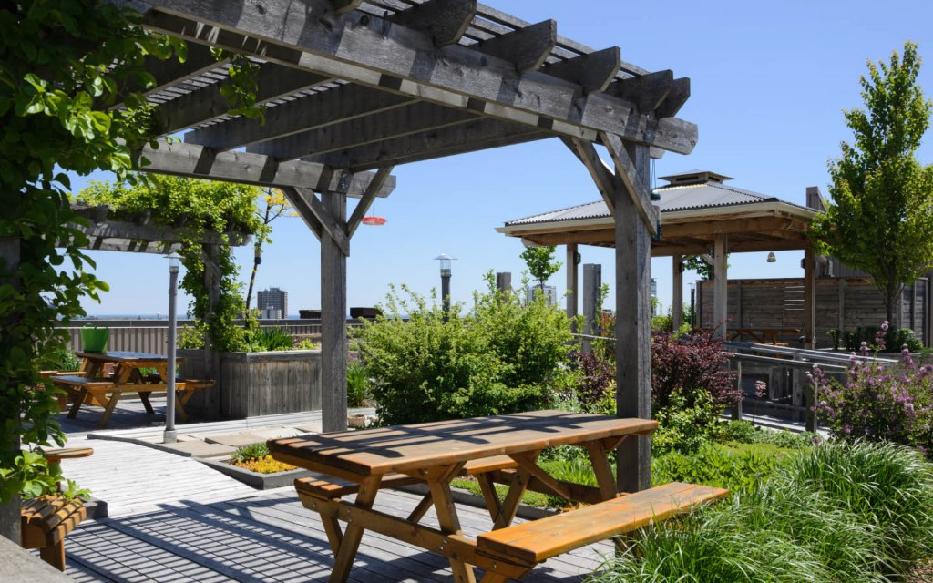 Install a picnic area to make your rooftop garden more cosy