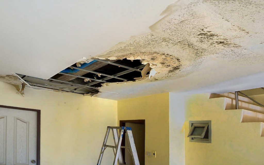 Buying a home with a basement gives easy access to central wiring and plumbing systems