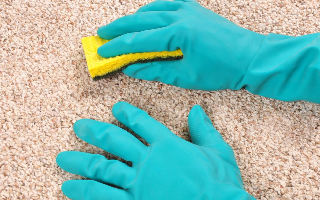 DIY Ways to remove carpet stains