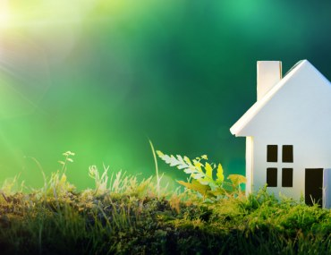 How to build an eco-friendly home