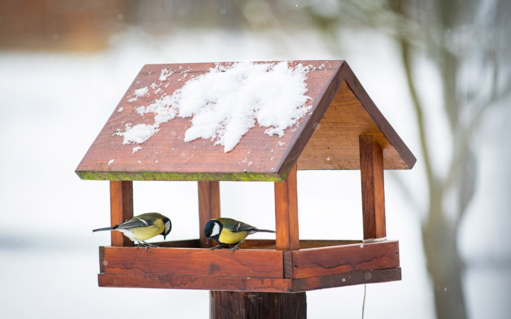 Bird feeder scrap wood project for your home
