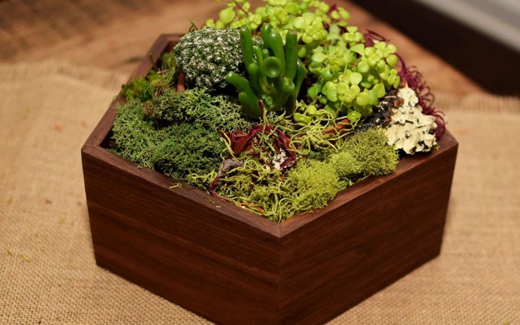 DIY a wooden planter
