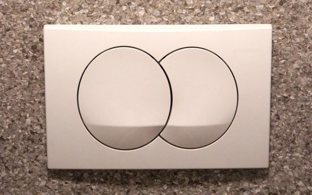 Dual-flush toilets are the best trendy features to consider when building your home