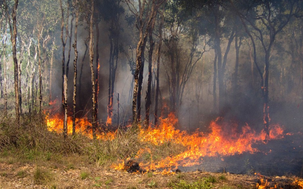 Bushfires can spread in not more than a minute