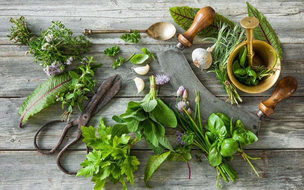 Kitchen garden herbs and vegetables