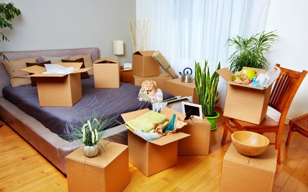 Unpacking the Bedroom