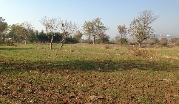 PPP rejects acquisition of fertile land