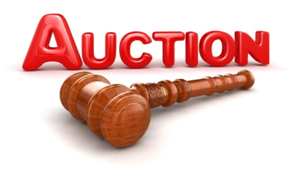 auction of plots